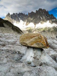 Glacier de Leschaux · Alpes, Massif du Mont-Blanc, Mer de Glace, FR · GPS 45°53'57.40'' N 6°57'48.47'' E · Altitude 2198m