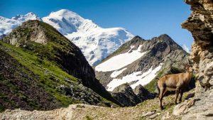 Col de Salenton · Alpes, Aiguilles Rouges, Vallon de Bérard, FR · GPS 46°0'27.61'' N 6°51'18.82'' E · Altitude 2498m