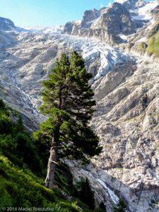 Glacier du Trient · Alpes, Valais, Massif du Mont-Blanc, CH · GPS 46°1'28.90'' N 7°1'25.07'' E · Altitude 1969m