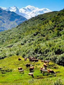 Refuge de Moëde Anterne · Alpes, Préalpes de Savoie, Aiguilles Rouges, FR · GPS 45°58'24.68'' N 6°48'5.02'' E · Altitude 1938m