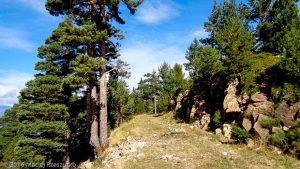 Col des Voltes · Pyrénées, Pyrénées-Orientales, Massif du Canigou, FR · GPS 42°32'46.27'' N 2°27'2.95'' E · Altitude 1804m