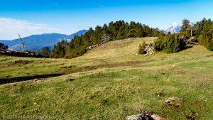 Parc Natural del Cadí · Pyrénées, Catalogne, Cadí, ES · GPS 42°16'56.56'' N 1°53'24.80'' E · Altitude 1733m
