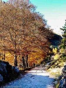 Gavarnie · Pyrénées, Hautes-Pyrénées, FR · GPS 42°43'12.98'' N 0°0'29.81'' W · Altitude 1436m