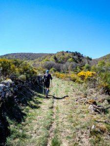 Parc National des Cévennes · Cévennes, Gard, FR · GPS 44°5'47.02'' N 3°26'33.35'' E · Altitude 1101m