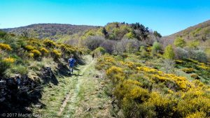 Parc National des Cévennes · Cévennes, Gard, FR · GPS 44°5'45.89'' N 3°26'33.84'' E · Altitude 1107m