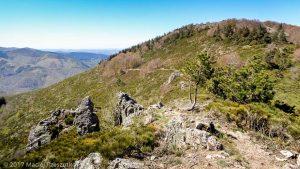 Parc National des Cévennes · Cévennes, Gard, FR · GPS 44°4'51.26'' N 3°25'40.85'' E · Altitude 1271m