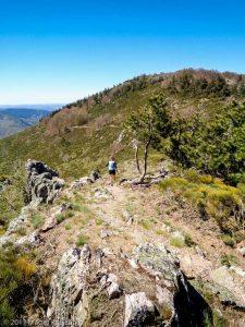 Parc National des Cévennes · Cévennes, Gard, FR · GPS 44°4'49.85'' N 3°25'39.53'' E · Altitude 1279m