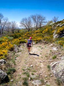 Parc National des Cévennes · Cévennes, Gard, FR · GPS 44°4'35.42'' N 3°26'36.29'' E · Altitude 1148m