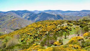 Parc National des Cévennes · Cévennes, Gard, FR · GPS 44°4'36.28'' N 3°26'36.17'' E · Altitude 1150m