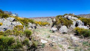 Parc National des Cévennes · Cévennes, Gard, FR · GPS 44°4'36.53'' N 3°26'36.50'' E · Altitude 1151m