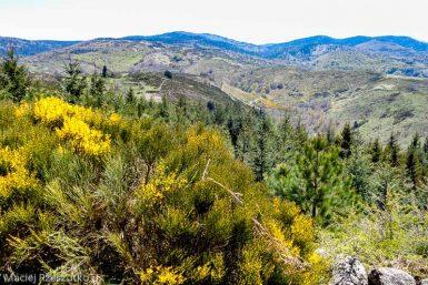 Parc National des Cévennes · Cévennes, Gard, FR · GPS 44°5'2.15'' N 3°28'20.90'' E · Altitude 1184m