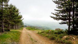 Madale · Hérault, Parc Naturel du Haut-Languedoc, Massif du Caroux, FR · GPS 43°36'43.04'' N 3°1'55.80'' E · Altitude 720m