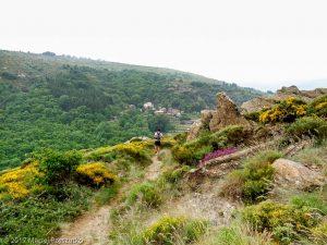 Madale · Hérault, Parc Naturel du Haut-Languedoc, Massif du Caroux, FR · GPS 43°36'46.81'' N 3°1'36.75'' E · Altitude 698m