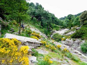 La Fage · Hérault, Parc Naturel du Haut-Languedoc, Massif du Caroux, FR · GPS 43°36'31.29'' N 3°0'28.77'' E · Altitude 719m