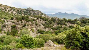 Serre de More · Hérault, Parc Naturel du Haut-Languedoc, Massif du Caroux, FR · GPS 43°38'51.22'' N 3°1'1.15'' E · Altitude 481m