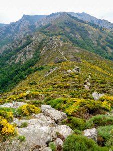 Serre de Majous · Hérault, Parc Naturel du Haut-Languedoc, Massif du Caroux, FR · GPS 43°39'8.91'' N 3°0'16.79'' E · Altitude 723m