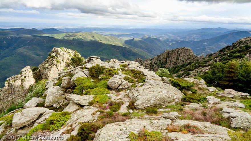 Rocher de Sarrazine · Hérault, Parc Naturel du Haut-Languedoc, Massif du Caroux, FR · GPS 43°35'35.10'' N 2°59'14.84'' E · Altitude 950m