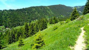 Plaine Joux · Alpes, Préalpes de Savoie, Massif du Giffre, FR · GPS 46°0'38.72'' N 6°39'11.27'' E · Altitude 1416m
