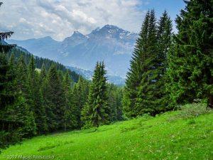 Les Tronchets · Alpes, Préalpes de Savoie, Massif du Giffre, FR · GPS 46°2'14.12'' N 6°39'35.76'' E · Altitude 1469.5m