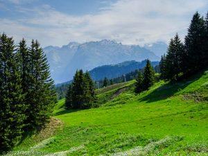 Croix des Sept Frères · Alpes, Préalpes de Savoie, Massif du Giffre, FR · GPS 46°2'30.28'' N 6°39'52.58'' E · Altitude 1665.4m