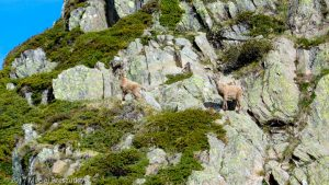 Refuge de Bel Lachat · Alpes, Aiguilles Rouges, FR · GPS 45°55'20.33'' N 6°49'42.13'' E · Altitude 2123m