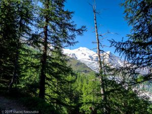 Grands Bois · Alpes, Massif du Mont-Blanc, Vallée de Chamonix, FR · GPS 45°54'7.27'' N 6°52'34.14'' E · Altitude 1851m