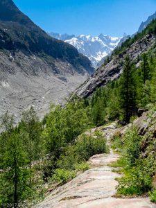 Buvette des Mottets · Alpes, Massif du Mont-Blanc, Vallée de Chamonix, FR · GPS 45°56'23.63'' N 6°55'2.92'' E · Altitude 1654m