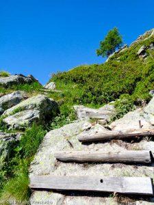 Aiguillette d'Argentière · Alpes, Aiguilles Rouges, Vallée de Chamonix, FR · GPS 45°59'3.28'' N 6°54'41.43'' E · Altitude 1924m