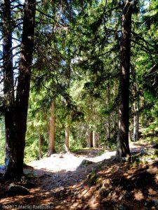 La Flégère · Alpes, Aiguilles Rouges, Vallée de Chamonix, FR · GPS 45°57'23.78'' N 6°53'10.11'' E · Altitude 1716m