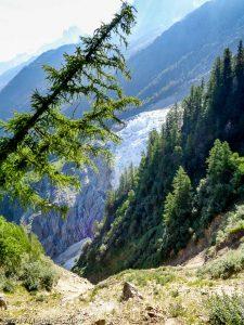 Montagne de la Côte · Alpes, Massif du Mont-Blanc, Vallée de Chamonix, FR · GPS 45°53'21.10'' N 6°50'56.17'' E · Altitude 1775m