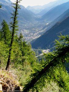 Montagne de la Côte · Alpes, Massif du Mont-Blanc, Vallée de Chamonix, FR · GPS 45°53'21.28'' N 6°50'56.75'' E · Altitude 1778m