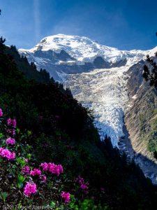 Montagne de la Côte · Alpes, Massif du Mont-Blanc, Vallée de Chamonix, FR · GPS 45°53'18.95'' N 6°50'55.52'' E · Altitude 1795m
