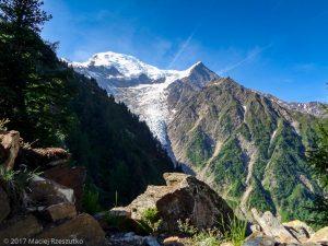 Montagne de la Côte · Alpes, Massif du Mont-Blanc, Vallée de Chamonix, FR · GPS 45°53'18.39'' N 6°50'57.62'' E · Altitude 1831m