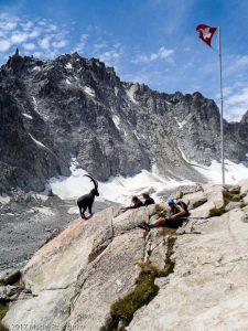 Cabane d'Orny · Alpes, Alpes valaisannes, CH · GPS 46°0'6.97'' N 7°3'46.92'' E · Altitude 2831m