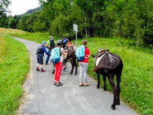 Vaudagne · Alpes, Massif du Mont-Blanc, Vallée de Chamonix, FR · GPS 45°54'22.01'' N 6°45'40.70'' E · Altitude 1100m