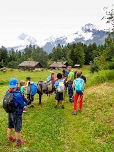 Charousse · Alpes, Massif du Mont-Blanc, Vallée de Chamonix, FR · GPS 45°54'4.75'' N 6°45'53.32'' E · Altitude 1202m