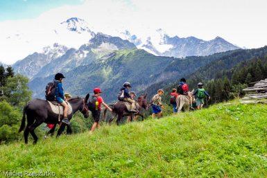 Granges des Chavants · Alpes, Massif du Mont-Blanc, Vallée de Chamonix, FR · GPS 45°53'48.51'' N 6°45'54.70'' E · Altitude 1263m