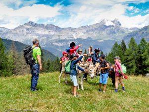Granges des Chavants · Alpes, Massif du Mont-Blanc, Vallée de Chamonix, FR · GPS 45°53'45.84'' N 6°45'53.33'' E · Altitude 1278m