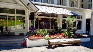 Club Med · Alpes, Aiguilles Rouges, Vallée de Chamonix, FR · GPS 45°55'32.57'' N 6°52'2.14'' E · Altitude 1050m