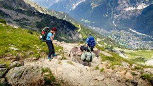 Sentier du Col du Brévent · Alpes, Aiguilles Rouges, Vallée de Chamonix, FR · GPS 45°56'26.06'' N 6°50'41.20'' E · Altitude 2294m
