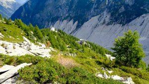 Sentier Montenvers-Signal · Alpes, Massif du Mont-Blanc, Vallée de Chamonix, FR · GPS 45°55'46.33'' N 6°54'57.27'' E · Altitude 2013m