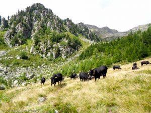 Sentier Finhaut - Emosson · Alpes, Alpes valaisannes, CH · GPS 46°5'8.43'' N 6°57'21.58'' E · Altitude 1802m