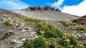 Col des Corbeaux · Alpes, Préalpes de Savoie, Aiguilles Rouges, FR · GPS 46°2'35.06'' N 6°53'2.27'' E · Altitude 2507m