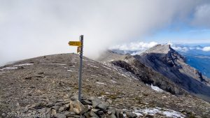 Cheval Blanc · Alpes, Préalpes de Savoie, Aiguilles Rouges, FR · GPS 46°3'7.04'' N 6°52'21.78'' E · Altitude 2825m