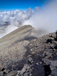 Arête du Buet · Alpes, Préalpes de Savoie, Aiguilles Rouges, FR · GPS 46°1'37.59'' N 6°51'3.80'' E · Altitude 3035m