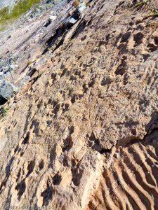 Traces des Dinosaures · Alpes, Préalpes de Savoie, Aiguilles Rouges, FR · GPS 46°2'53.17'' N 6°53'4.47'' E · Altitude 2380m