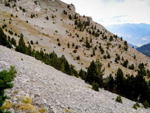 - · Pyrénées, Catalogne, Cadí, ES · GPS 42°17'26.55'' N 1°44'51.44'' E · Altitude 2170m
