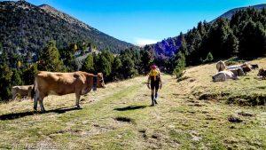 Aixeques · Pyrénées, Pyrénées-Orientales, FR · GPS 42°28'44.95'' N 2°11'41.37'' E · Altitude 1991m