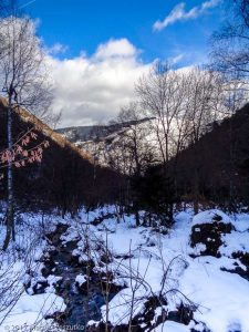 Bois des Artigues · Pyrénées, Pyrénées ariégeoises, Vallée de Mérens, FR · GPS 42°39'6.98'' N 1°49'11.47'' E · Altitude 1234m