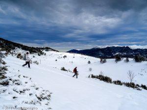 Pla des Espédis · Pyrénées, Pyrénées ariégeoises, Prades, FR · GPS 42°46'33.71'' N 1°50'32.28'' E · Altitude 1547m